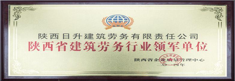 yabo手机客户端下载省建筑劳务行业领军单位